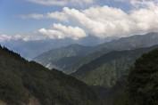 Alishan Mountain