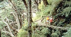 Jadeberg Wanderweg
